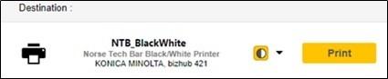 Yellow Print Button
