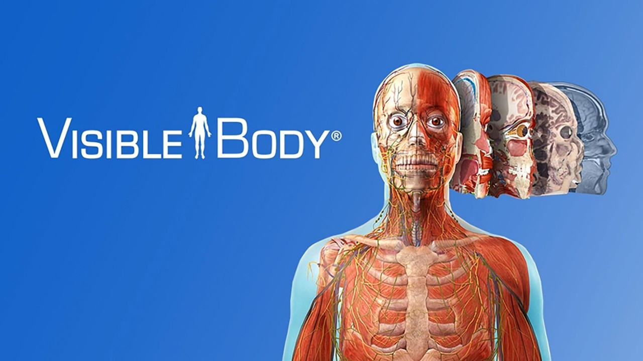 New Interactive Resource! Visible Body